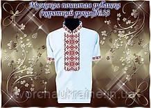 Мужская пошитая рубашка короткий рукав «Традиция» № 33