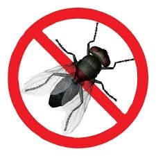 От комаров и мух