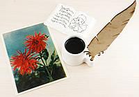 """Открытка """"Хризантемовидные георгины"""" 1957 год фото И.Шагина(товар при заказе от 500грн)"""