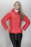Купить куртку недорого демисезонную женскую  ( разные цвета)
