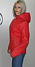 Купить куртку осеннюю из плащевки лаке Разные цвета , фото 3