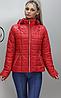 Женская спортивная куртка батальных размеров  ( Разные цвета), фото 3