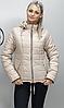 Женская спортивная куртка батальных размеров  ( Разные цвета), фото 8