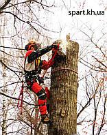 Арбористика - спил аварийных деревьев