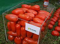 Семена томата Айдар F1 1000 сем. Clause
