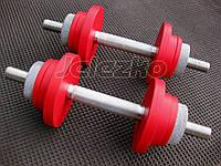 Гантели наборные Jelezko по 10 кг (шаг регулировки веса 1 кг)