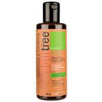 Органический шампунь для восстановления волос с лакричником, Шикакай и кокос.мас. «Soultree» (200 мл)