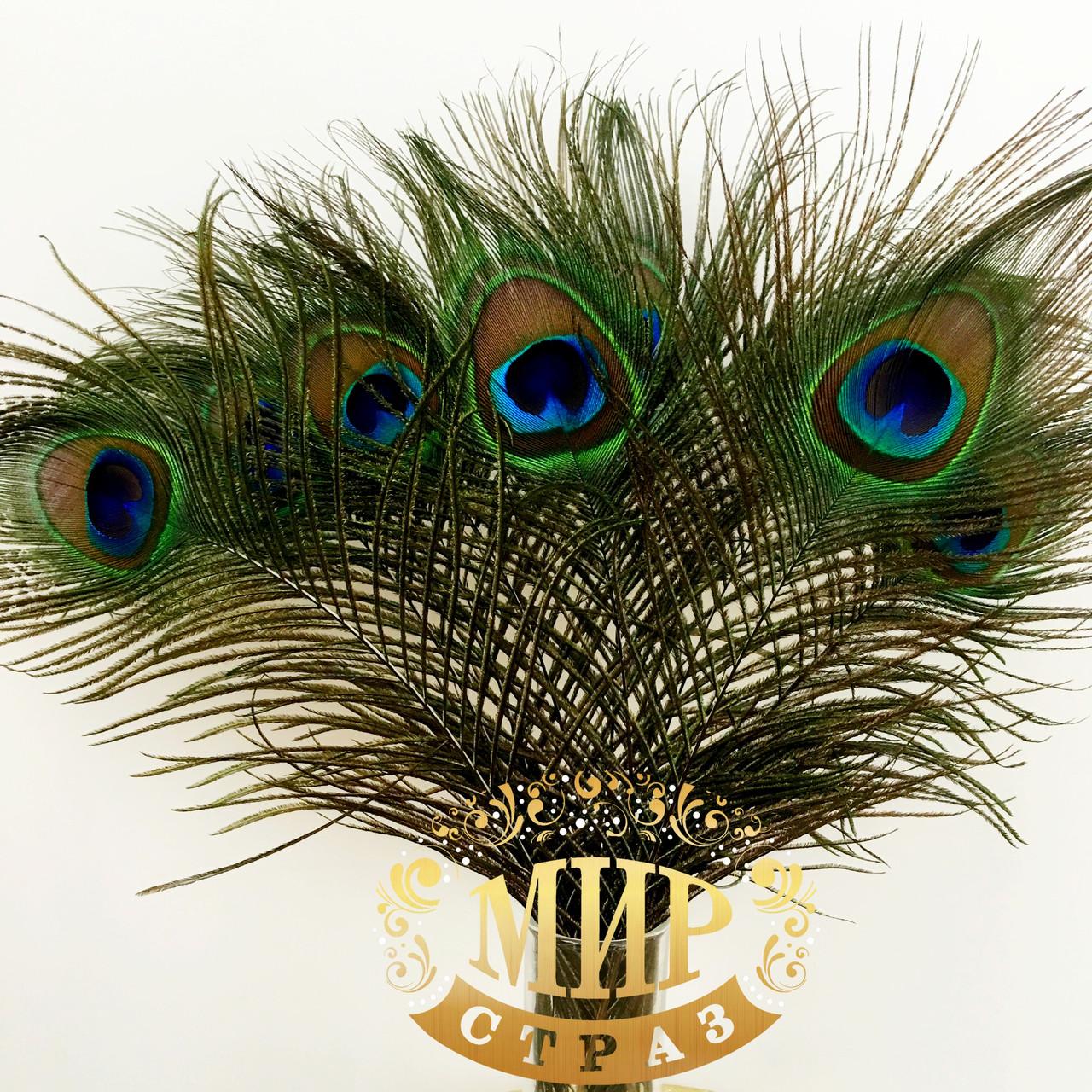 Опахало из натуральных павлиньих перьев