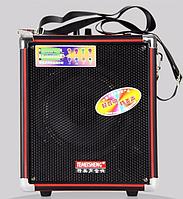 TEMEISHENG Q5S-16 переносная колонка с усилителем микрофоном