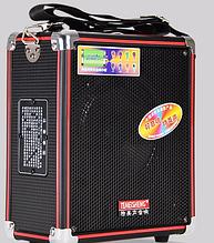 Портативна колонка з підсилювачем мікрофоном Temeisheng