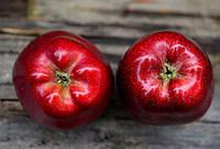 Яблочный пектин для похудения