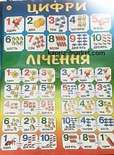 Плакат А2 ,цифри
