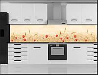 Стеклянный фартук для кухни - скинали Маки Цветы