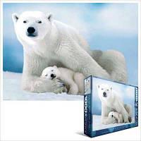 Белая медведица с медвежонком