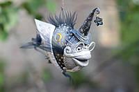 """Рыбка """"звездочёт"""", фото 1"""