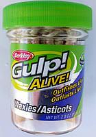Опарыш искуственныйBerkley Gulp Alive Waxies GAJMG-WH 1см White 190шт.