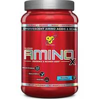 BSN Amino X  1.01 кг