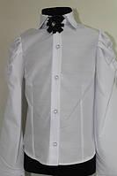 Шкільна блузка для дівчинки: 1095 116