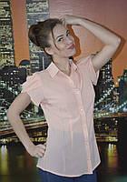 Блузка женская с пуговицами