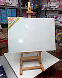 Холст чистый на подрамнике, грунтованный,  40х20 см., фото 5