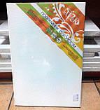 Холст чистый на подрамнике, грунтованный,  40х20 см., фото 9