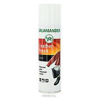 Краска-аэрозоль SALAMANDER Leather Fresh для гладкой кожи. Цвет- пиния(темно-зеленый). 250мл.
