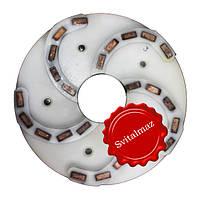 Пластмассовый алмазный однорядный шлифовальный круг для камня Ф250 мм. №3 (дельфин) на прижимные станки., фото 1