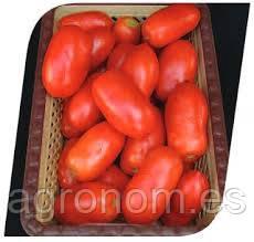 Семена томата Грандо F1 5000сем. Lark Seeds