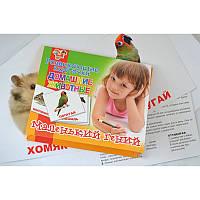 """Набор детских карточек """"Домашние животные"""" 951286 1 Вересня, 15 шт в наборе"""