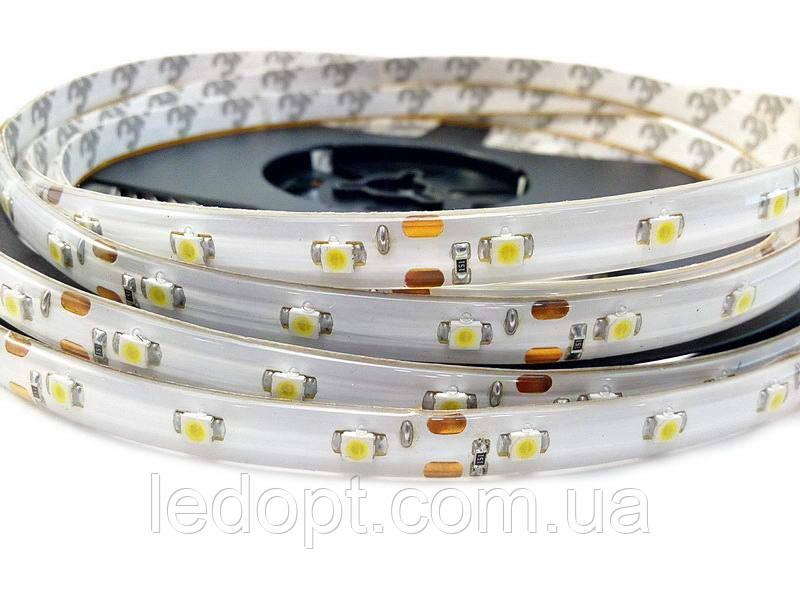 Светодиодная лента SMD3528 4,8W 60 LED/m IP65 в силиконе теплый Warm White 2700-3000k