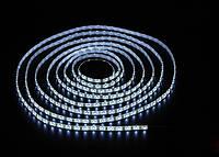 Светодиодная лента SMD2835 9,6W 8mm 120 LED/m IP20 Cool White 9000-12000k