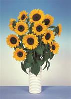 Подсолнечник декоративный sunbright supreme, sakata  1 000 семян
