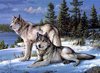 "Алмазная вышивка ""Волки на снегу"" (техника рисование камнями)"