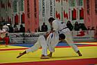 Татами ProGame Multisport Performance от Trocellen для боевых искусств 40 мм (ласточкин хвост), фото 9