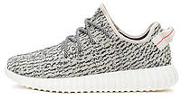 Кроссовки Adidas Yeezy Boost 350 Turtle/Grey