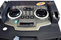 Караоке стереосистема Temeisheng T244 , фото 2