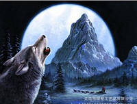 """Алмазная вышивка """"Волк"""" (техника рисование камнями)"""