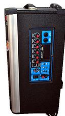 Колонка Temeisheng 1001 с аккумулятором, фото 2