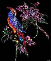 Алмазная картина Райская птичка 2