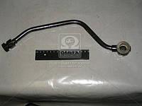 Кронштейн амортизатора верхний правый ГАЗ 53 (покупн. ГАЗ). 53-2905540