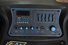 Колонка с аккумулятором Комбоусилитель Temeisheng 1502, фото 2