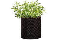 Горшок для цветов Keter Small Cylinder Planter Коричневый