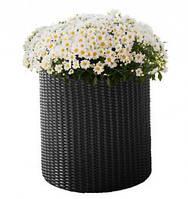 Горшок для цветов Keter Small Cylinder Planter Серый