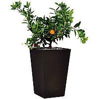 Горшок для цветов Keter Large Rattan Planter Коричневый