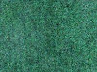 Ковролин Beaulieu Real Index 9899 зеленый