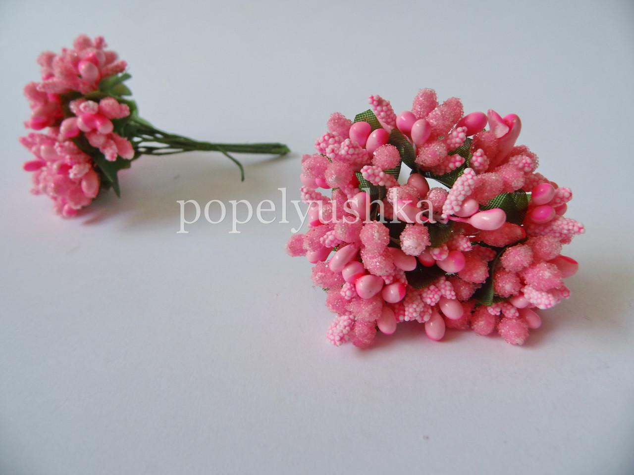 Тичинки дрібноцвіт яскраво-рожевий