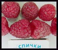 малина, клубника ягода свежая с поля Полка, полана, геракл