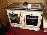 Отопительно-варочная печь Nordica America(CREMA), фото 8