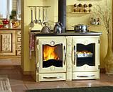 Отопительно-варочная печь Nordica America(CREMA), фото 9