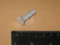 Заклепка 10х20 накладки колодки тормоза КАМАЗ, ЗИЛ (1кг - 190шт) (Украина). Г10300-80